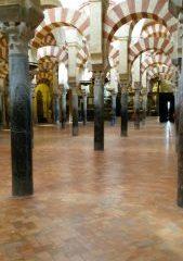 L'huile d'olive dans la culture arabe : Origine et recettes